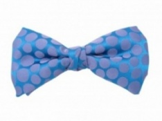Ready Tied Bow Tie With Purple Spots on Blue Background