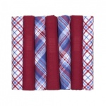 Mixed Plain Deep Red and Red White and Blue Patterned Hankies