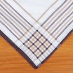 White Handkerchiefs with Coloured Check